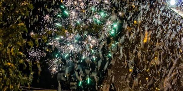 Citerna – Festa della Luce (3)